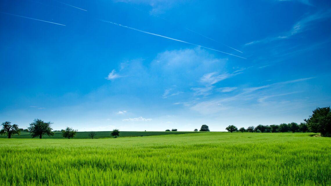 Hav miljøet i tankerne, når du skal finde en bolig