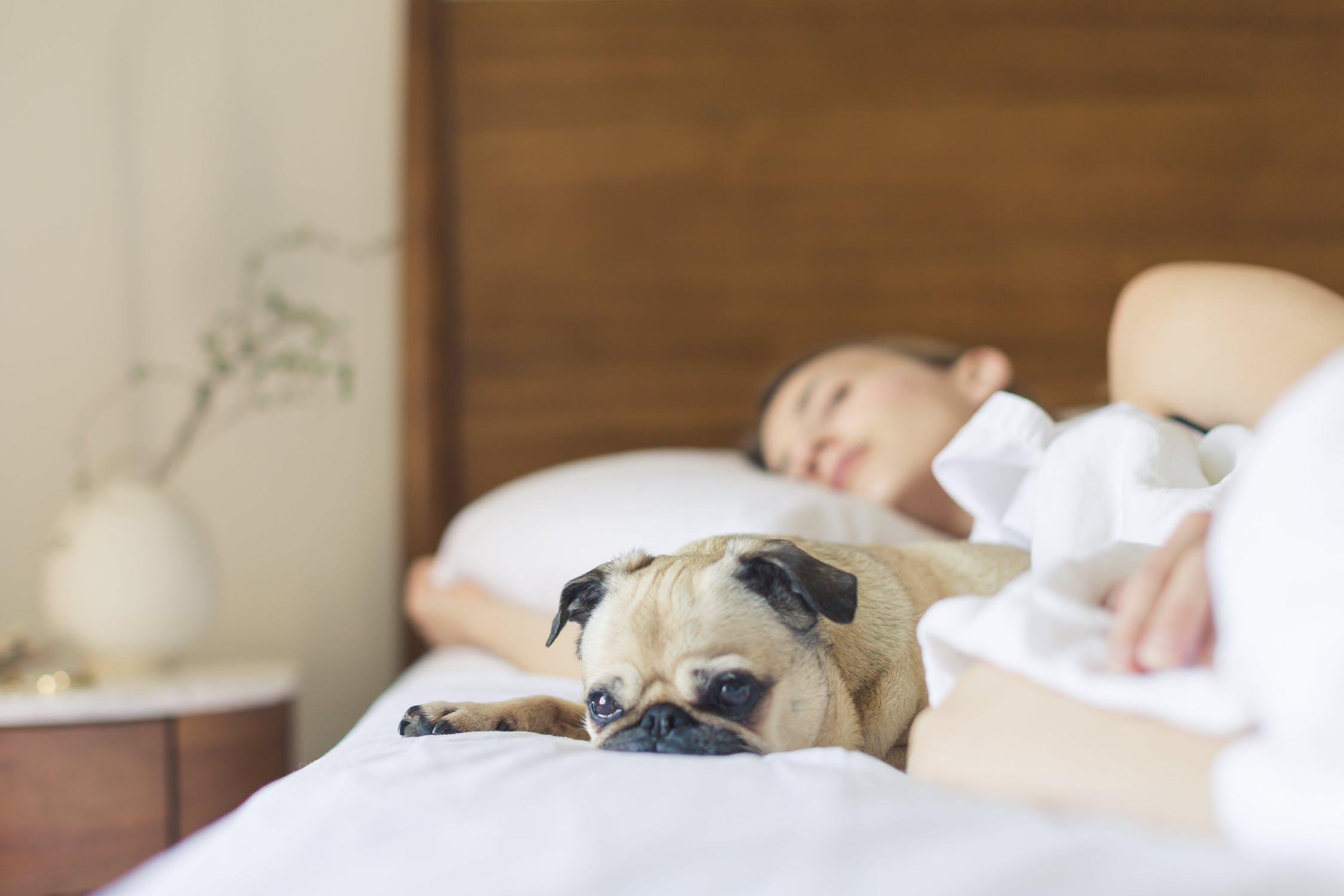 Begår du disse 5 fejl, inden du skal sove?