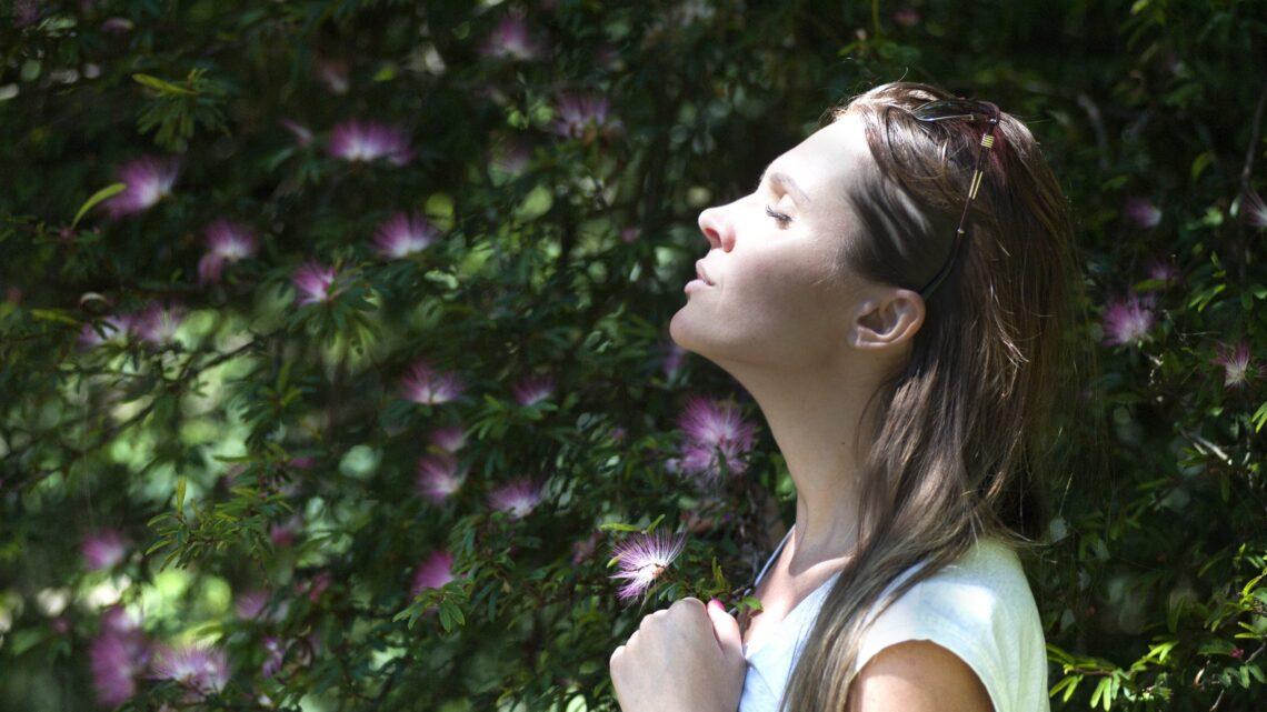 Ro, meditation og kollega-ture er vejen frem