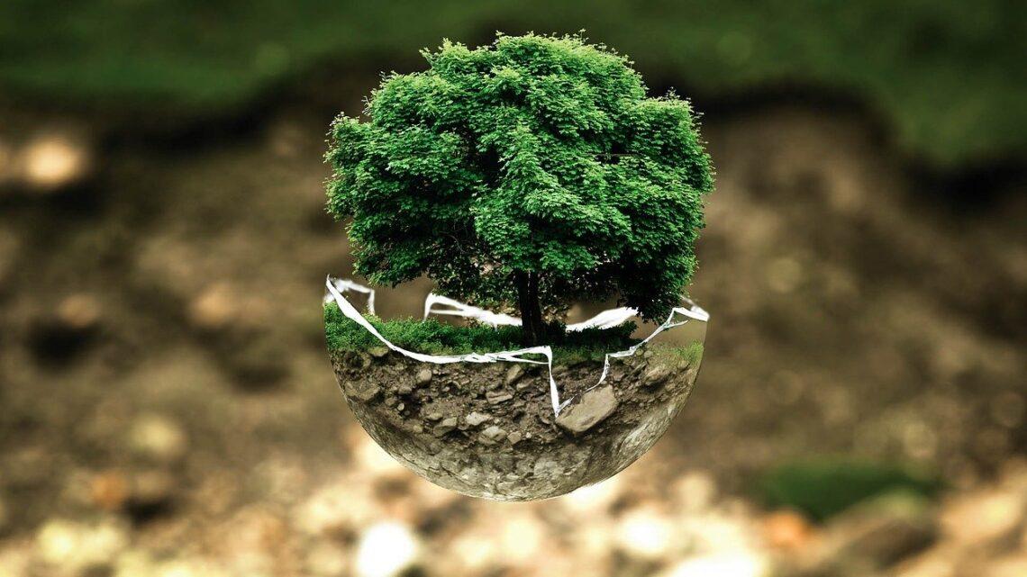 Grønne alternativer kan give dig et bedre overskud